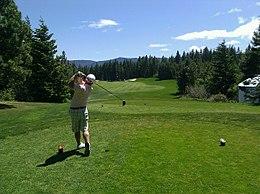 260px-Golfer_swing