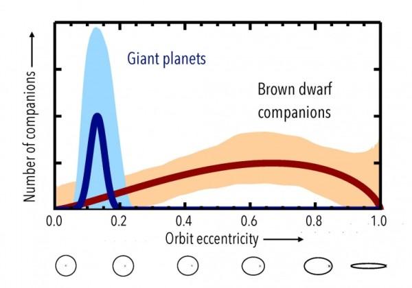 Le due curve mostrano la distribuzione finale delle forme orbitali per i pianeti giganti e lontani e per lee nane brune. La diversità è più che evidente. Credit: Brendan Bowler (UT-Austin)